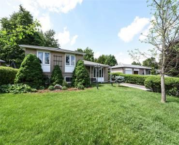 6 Brookdale Cres, Brampton, Ontario L6T1M7, 3 Bedrooms Bedrooms, 6 Rooms Rooms,2 BathroomsBathrooms,Detached,Sale,Brookdale,W4781636