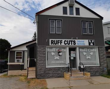110 Queen St- Kawartha Lakes- Ontario K9V 1G6, 1 Bedroom Bedrooms, 5 Rooms Rooms,3 BathroomsBathrooms,Store W/apt/offc,Sale,Queen,X4802803