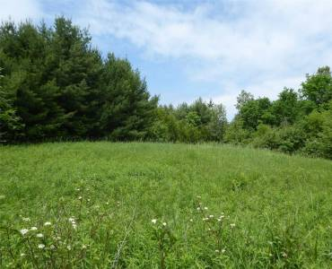5329 First Line, Erin, Ontario L7J 2L4, ,Vacant Land,Sale,First,X4776829