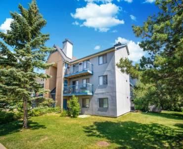 95 Trailwood Dr- Mississauga- Ontario L4Z3L2, 2 Bedrooms Bedrooms, 5 Rooms Rooms,2 BathroomsBathrooms,Condo Townhouse,Sale,Trailwood,W4804168