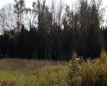 40 Stephenson Point Rd- Scugog- Ontario L9L1B6, ,Vacant Land,Sale,Stephenson Point,E4713596
