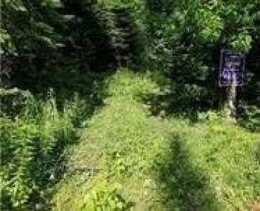 Lot 52 Sunrise Dr- Kearney- Ontario P1H 1A0, ,Vacant Land,Sale,Sunrise,X4769419