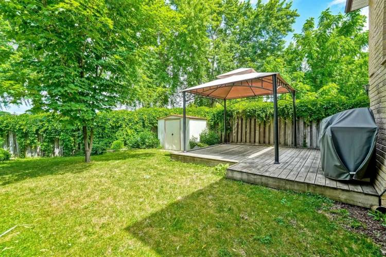 36 Burton Rd- Brampton- Ontario L6X1M7, 3 Bedrooms Bedrooms, 7 Rooms Rooms,3 BathroomsBathrooms,Detached,Sale,Burton,W4807997