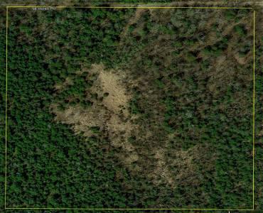 Lot 10 Mount Horeb Rd- Kawartha Lakes- Ontario L0B 1K0, ,Vacant Land,Sale,Mount Horeb,X4811233