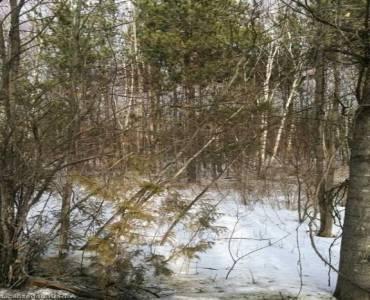 0 Ballyduff Rd- Kawartha Lakes- Ontario L0A1A0, ,Vacant Land,Sale,Ballyduff,X4708086