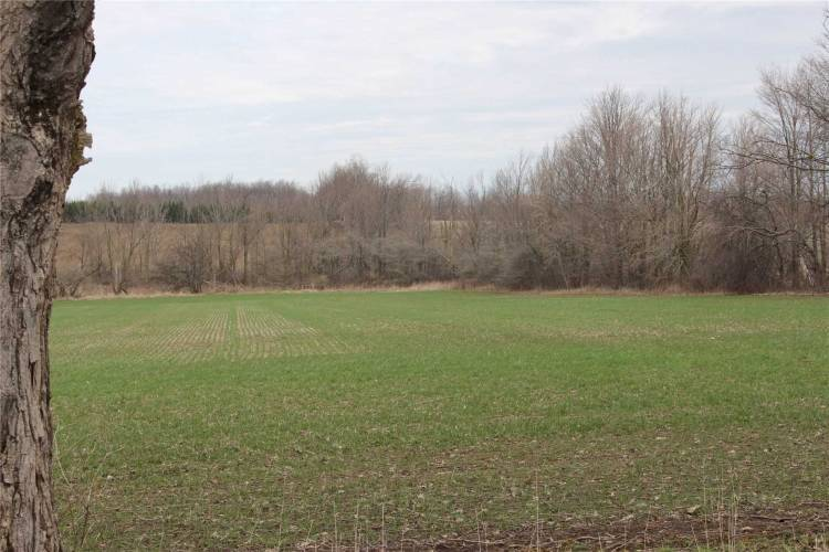 00 Con 3/4 Rd- East Luther Grand Valley- Ontario L9W0L7, ,Vacant Land,Sale,Con 3/4,X4753462